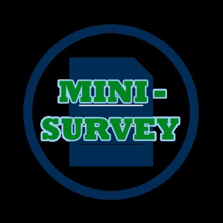 Mini-survey icon