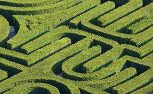 Maze photograph