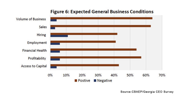 Business Expectations - Georgia CEO Graph
